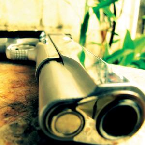 Guns and Crimes