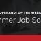 Beware of summer job scams